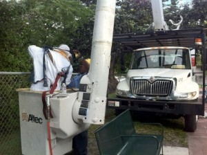 technician getting ready to address bee problem