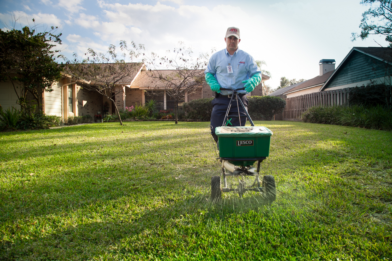 Orlando Lawn Care Information For Your St Augustine Lawn