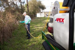 Apex Pest Control technician spraying landscape perimeter