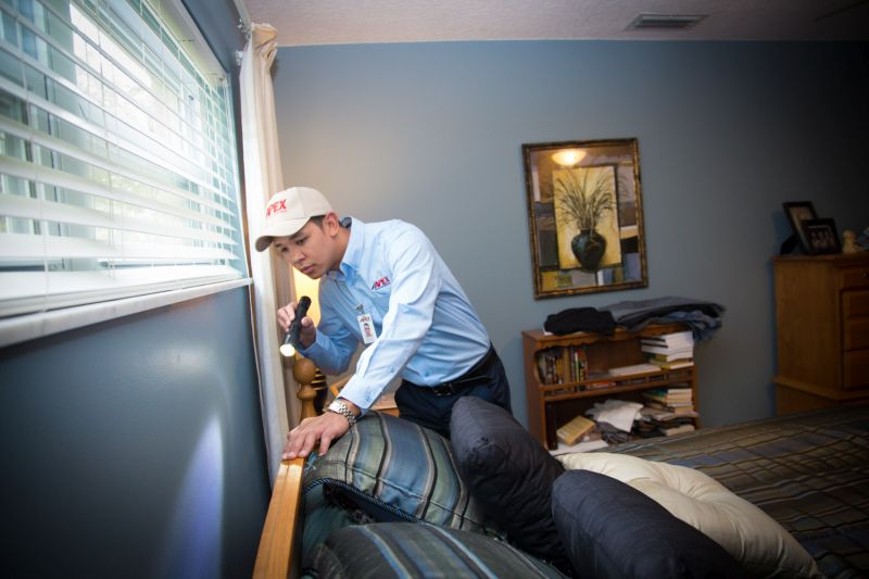 Apex Pest technician looking for bed bugs with a flashlight